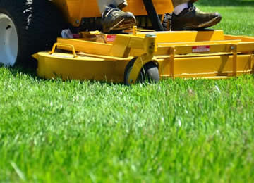 Affordable Professional Lawn Mowing Services near me in Royal Oak, Birmingham, and Troy MI